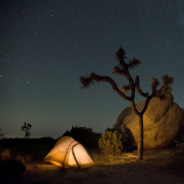 Camping And Trails Park Info Joshua Tree National Park