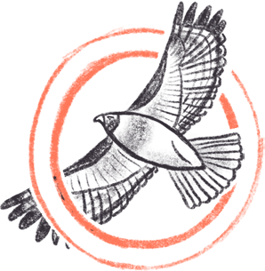 Red-tailed hawk badge